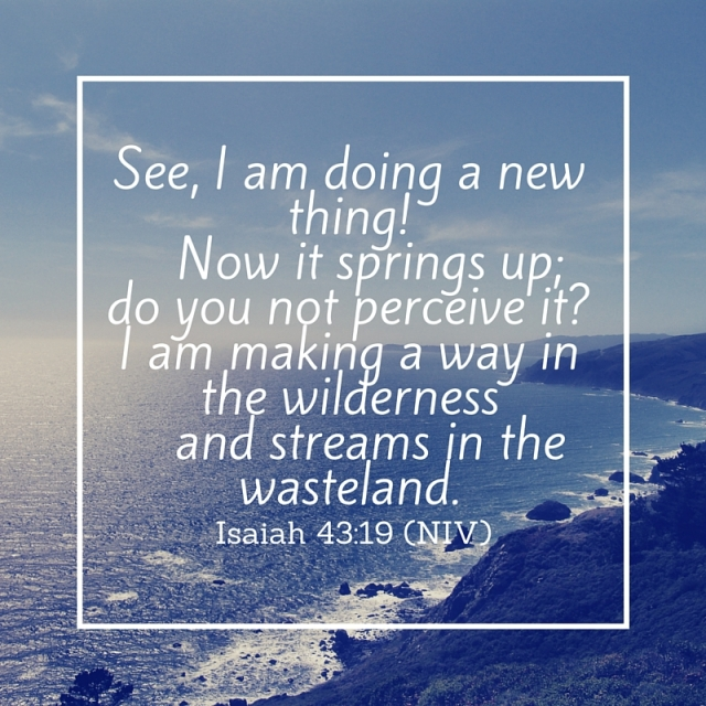 See, I am doing a new thing! Now it springs up; do you not perceive it-I am making a way in the wilderness and streams in the wasteland..jpg